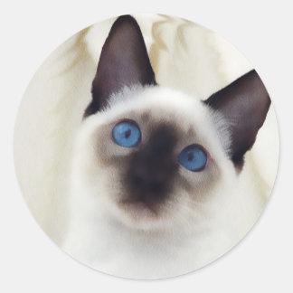 Siamese Kitten Classic Round Sticker