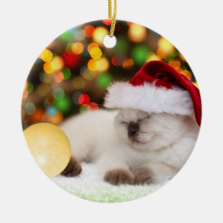 Siamese Kitten: Gold Ornament