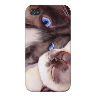 Siamese Kitten Sleeping with Mom iPhone 4 Case