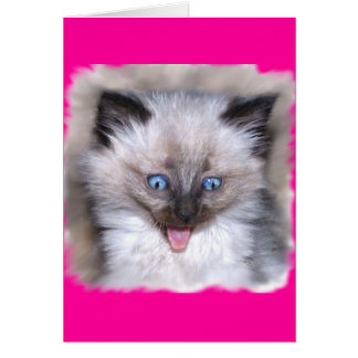 Siamese Kitten With Tongue Out Greeting Card