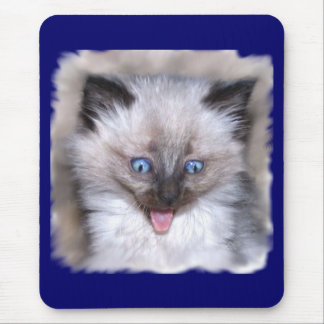 Siamese Kitten With Tongue Out Mouse Pad