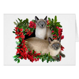Siamese Kittens in Berry Frame Card