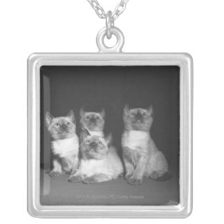 Siamese kittens looking up B&W Silver Plated Necklace