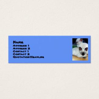 Siamese Kittens Profile Card