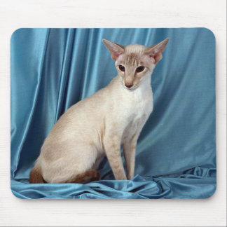 Siamese, lilac point mouse pad