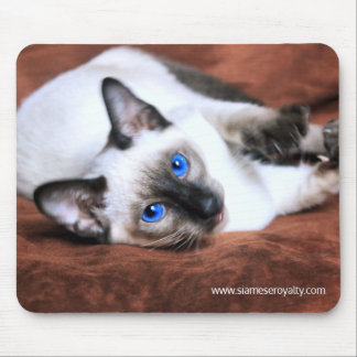 Siamese Royalty Mouse Pad