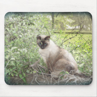 Siamese & Vines Mouse Pad
