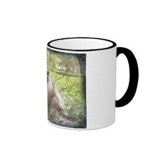 Siamese & Vines Mugs