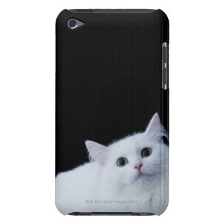 Siberian Cat Barely There iPod Case