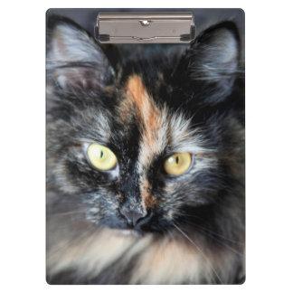 Siberian Cat Clipboard