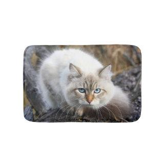 Siberian Cat In A Autumn Forest Bath Mats