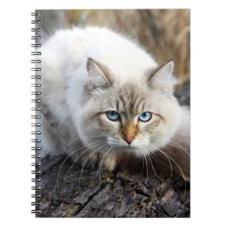 Siberian Cat In A Autumn Forest Note Book