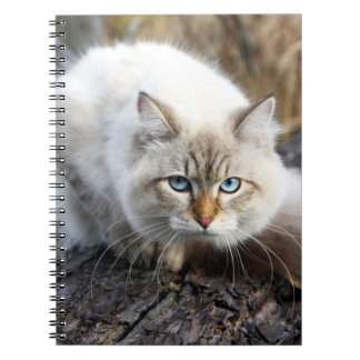 Siberian Cat In A Autumn Forest Notebook