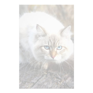 Siberian Cat In A Autumn Forest Stationery