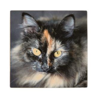 Siberian Cat Wood Coaster