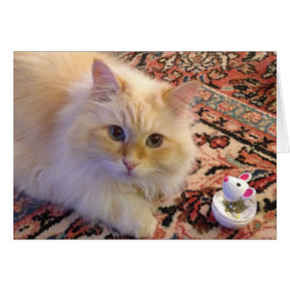 Siberian Forest Cat & Toy Card