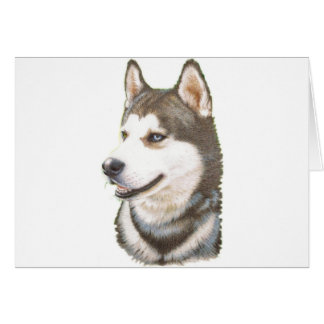 Siberian Huskey Dog Card