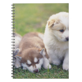 Siberian Husky; A working dog breed that Note Book