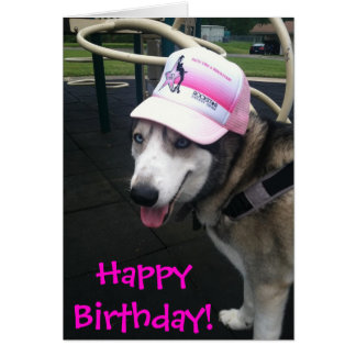 Funny Dogs Birthday Cards & More