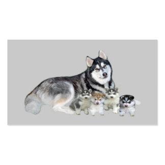 Siberian Husky Breeder Business Card