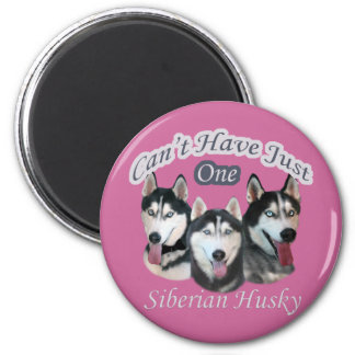 Siberian Husky Can't Have Just One 6 Cm Round Magnet