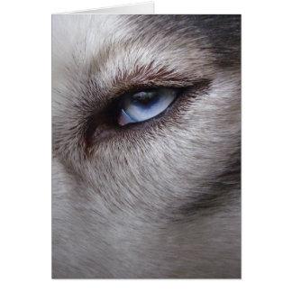 Siberian Husky Card Alaskan Malamute Card