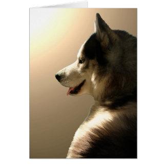 Siberian Husky Card / Alaskan Malamute Card