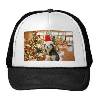 Siberian Husky Christmas Tree Tees Tshirt Cap