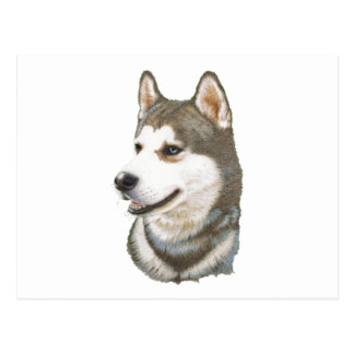 Siberian Husky Dog Art Postcard