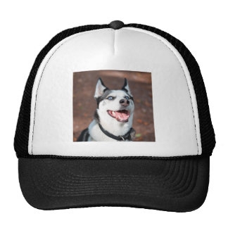 Siberian Husky dog blue eyes Trucker Hat
