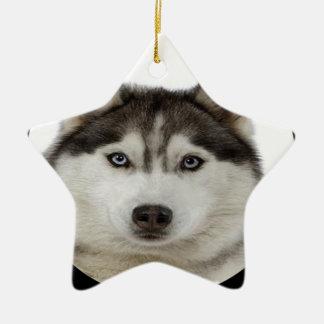 """""""Siberian Husky dog"""" Christmas Ornament"""