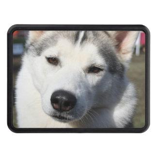 Siberian Husky Dog Photo Trailer Hitch Covers
