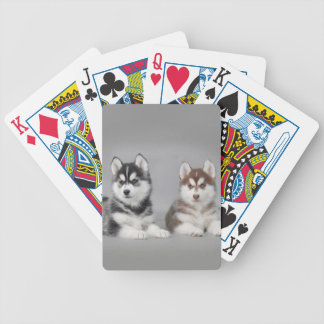 Siberian husky puppies bicycle playing cards