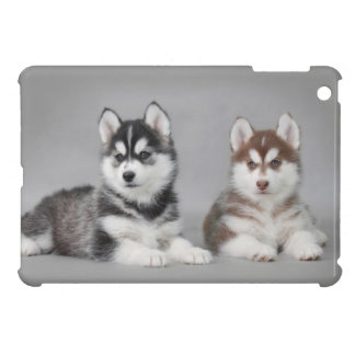 Siberian husky puppies cover for the iPad mini