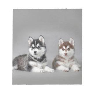Siberian husky puppies notepad