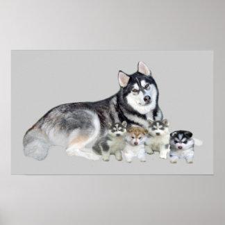 Siberian Husky & Puppies Print