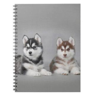 Siberian husky puppies spiral note books