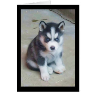 Siberian Husky puppy art Card