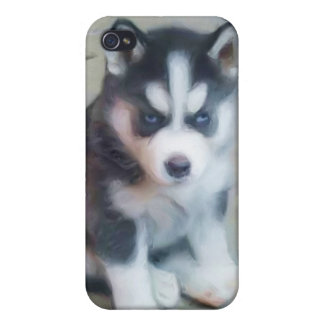 Siberian Husky Puppy Case For The iPhone 4