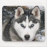 Siberian Husky Puppy Dog in Snow Mousepad