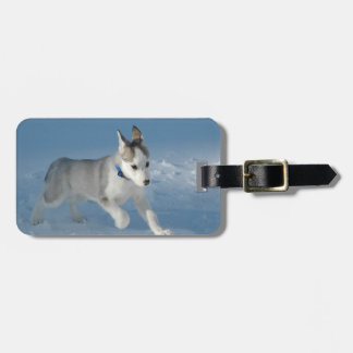 Siberian Husky Puppy Luggage Tag