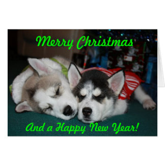 Siberian Husky Puppy Note Card