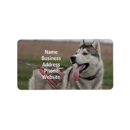 Siberian Husky sled dog Address Label