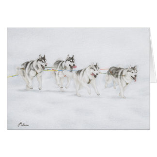 Siberian Husky Sled Dog Racing Team Card