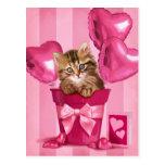 Siberian Kitten Post Cards