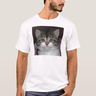 Siberian Tabby/White Kitten T-Shirt