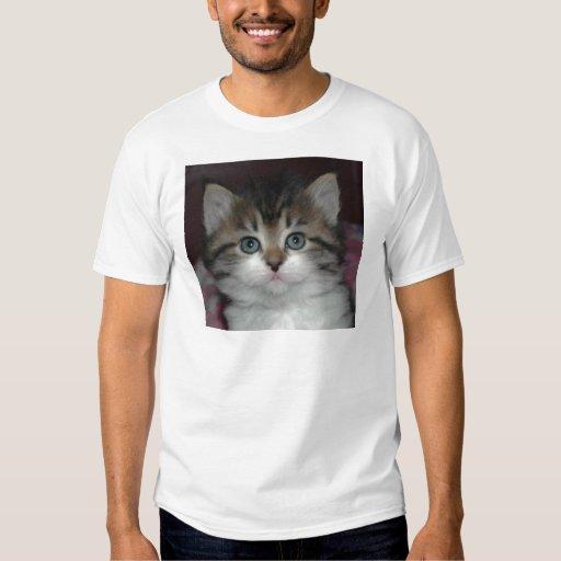 Siberian Tabby/White Kitten Tees