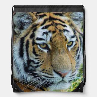 Siberian Tiger, Amur Tiger Drawstring Backpack