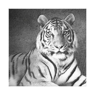Siberian Tiger Art in Black and White - Canvas Gallery Wrap Canvas