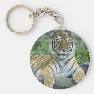 Siberian Tiger Basic Round Button Key Ring